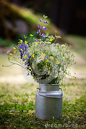 Bouquet Of Wild Flowers Stock Images - Image: 26134414