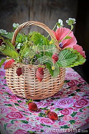 Bouquet of wild strawberries in a basket