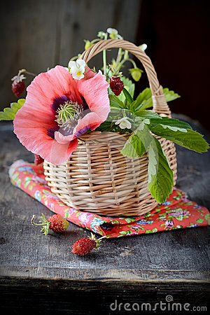 Bouquet of wild strawberries in a basket