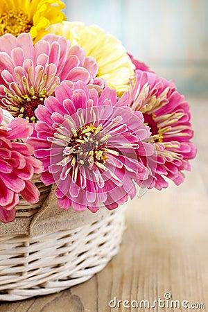 Bouquet of zinnia flowers in wicker basket.