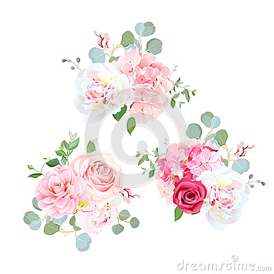 Free Bouquets Of Rose, Peony, Camellia, Hydrangea And Eucalyptus. Royalty Free Stock Image - 87707666