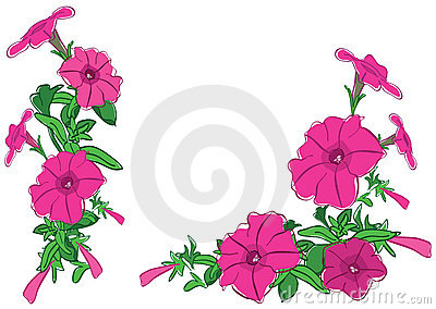 Bouquets of red flowers - illustration - vector