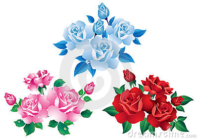 Bouquets with red, pink and blue roses.