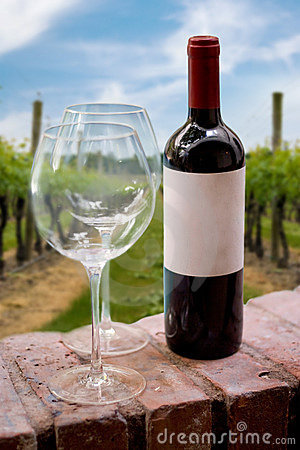 Bouteille de vin de vigne