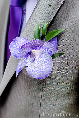 Free Boutonniere, Wedding Male Accesory Royalty Free Stock Photography - 39743967