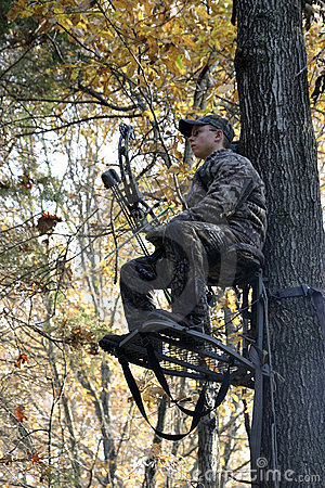 Bow Hunter Waiting in Tree Stand