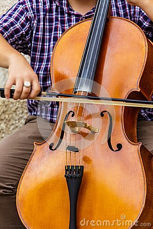 Free Bow On A Bass Royalty Free Stock Image - 113524836