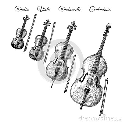 Free Bowed String Instruments Royalty Free Stock Photo - 125739775