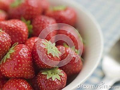 Bowl of English Strawberries