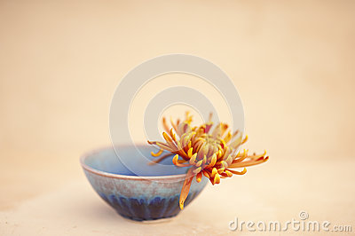 Bowl and Flower