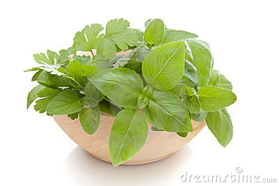 A bowl of fresh herbs