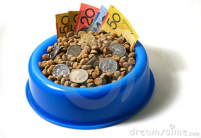 Bowl of money dog food