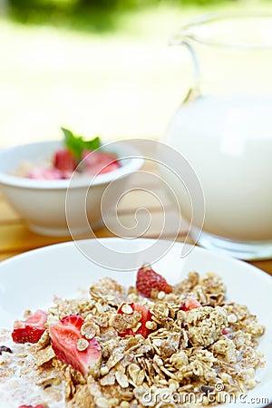 Bowl of muesli with fresh fruits