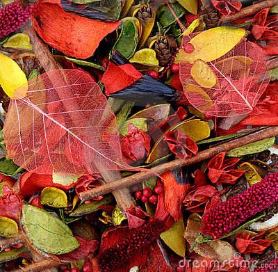 Free Bowl Of Colourful Potpourri Stock Images - 4132514