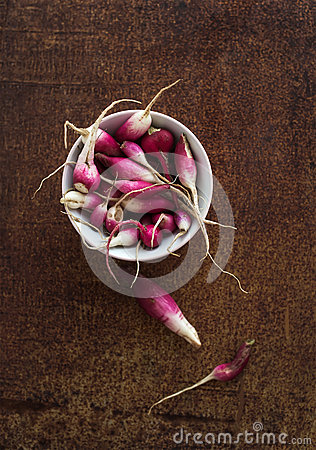 Free Bowl Of Fresh Garden Radishes On Rusty Grunge Royalty Free Stock Photos - 60784368