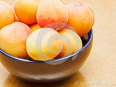 Bowl of Ripe Peaches