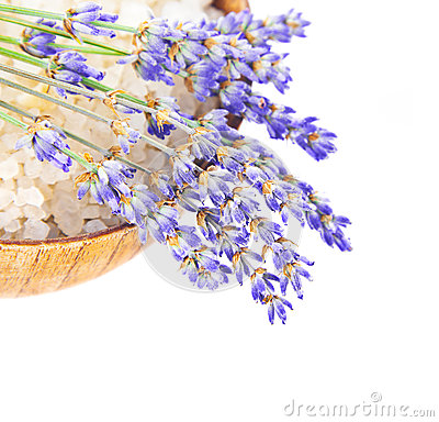 Free Bowl With Salt And Lavender Flowers Isolated Stock Image - 26369031