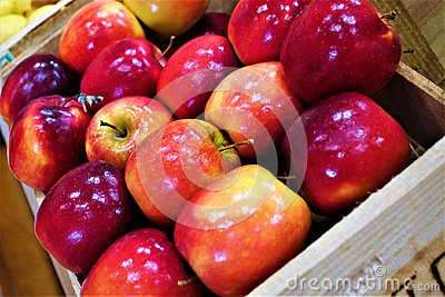 Box of apples Stock Photo