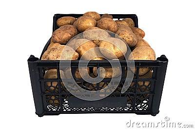 The box of bright yellow potatoes