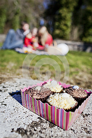Box of Cupcakes at Picnic