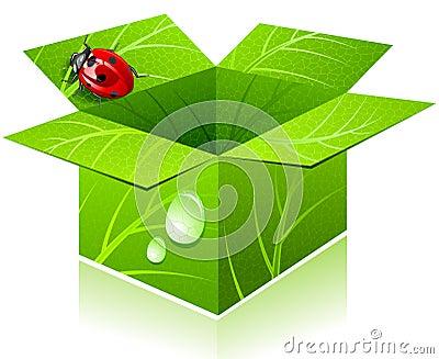 Box & lady-bug.