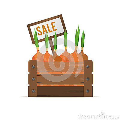 A box of onions. Selling vegetables. Street food trade. Vector i Vector Illustration