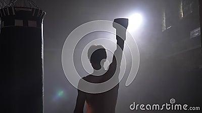 Boxeador descamisado que anima sobre la victoria, el ganador que aumenta la mano en guantes, el humo y la iluminación brillante almacen de metraje de vídeo