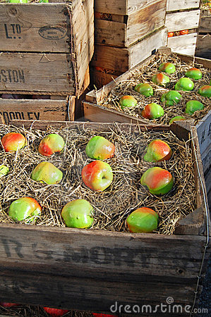 Boxed apples