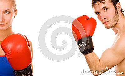 Boxer couple