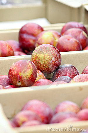 Boxes of Plums