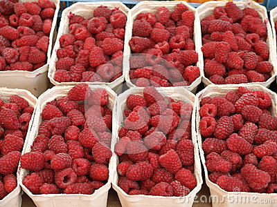 Boxes with raspberries