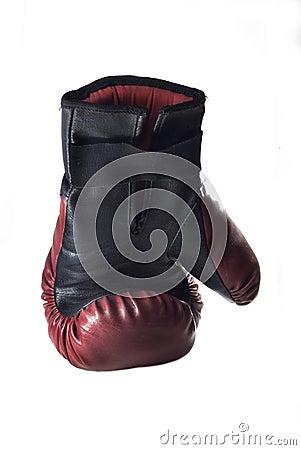 Free Boxing Glove Royalty Free Stock Photo - 13243195