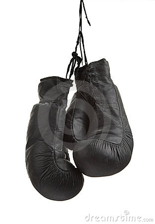 Free Boxing-glove Stock Photography - 5058362