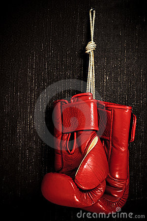 Free Boxing-glove Stock Images - 9506444