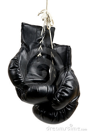 Free Boxing Gloves Royalty Free Stock Photos - 13978248