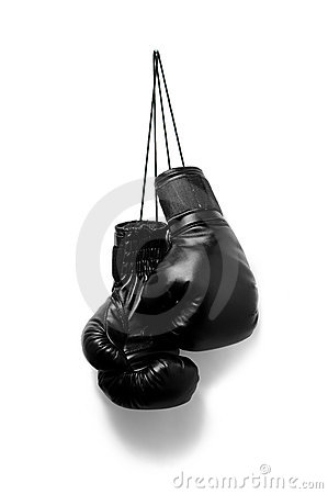Free Boxing Gloves Stock Photo - 22979540