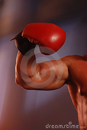 Boxing muscle