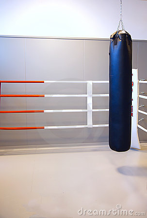Free Boxing Ring With Bag Royalty Free Stock Images - 22149599