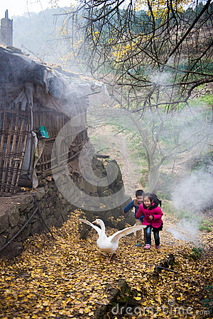 Free Boy And Girl Playing With Geese Royalty Free Stock Photography - 66476377