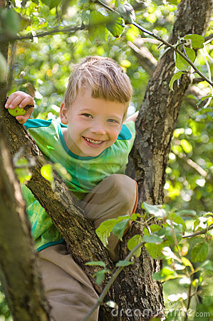 Boy on an apple tree