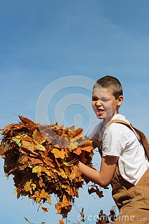 Boy Armful Of Leaves Royalty Free Stock Photo - Image: 27560415
