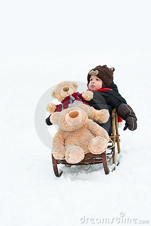 Boy and bears in the sled