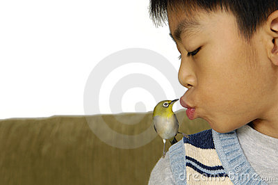 Boy and  Bird