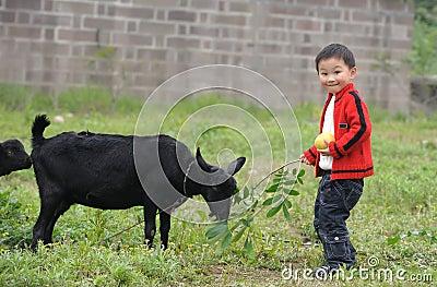 Boy and black goat