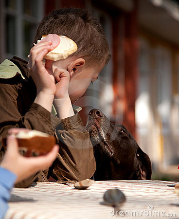 Boy with bred and butter and begging dog