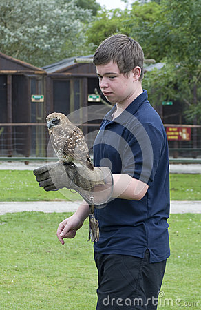 Boy with Brown Wood Owl