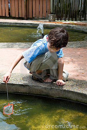 Free Boy Catching Little Fish With A Net Royalty Free Stock Images - 4853159