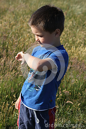 Boy with caterpillar on his arm