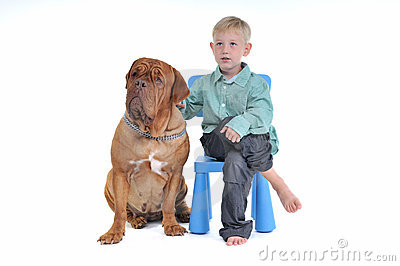 Boy on Chair with Dog
