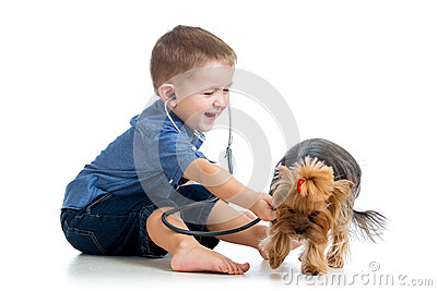 Boy child examining dog puppy on white background
